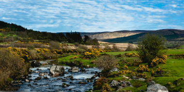 Wicklow Mountains National Park